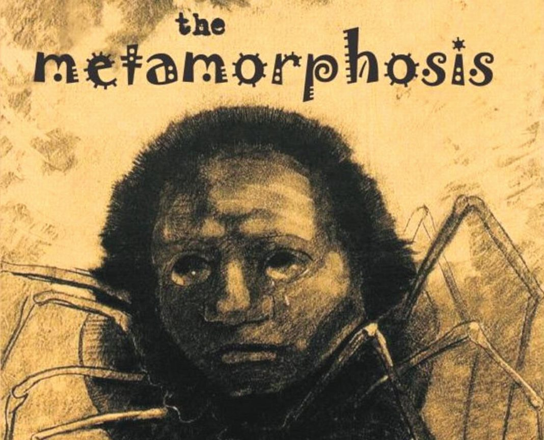 Analytical essay on the metamorphosis
